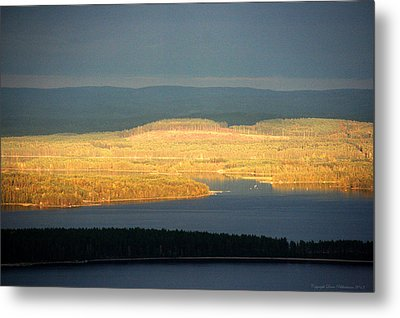 Golden Shores Metal Print