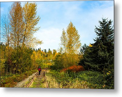 Metal Print featuring the photograph Golden Shortcut by Crystal Hoeveler