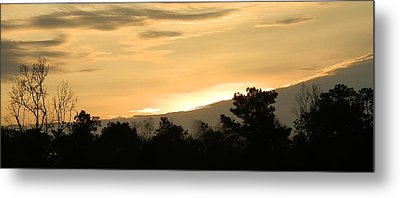 Golden Sky Metal Print by Ione Hedges