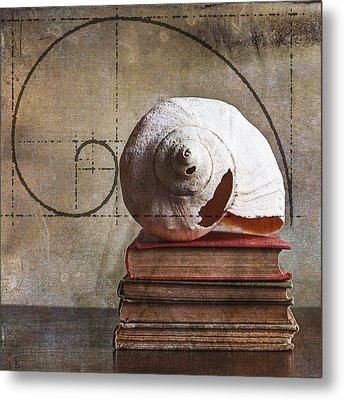 Golden Spirals Metal Print by Terry Rowe