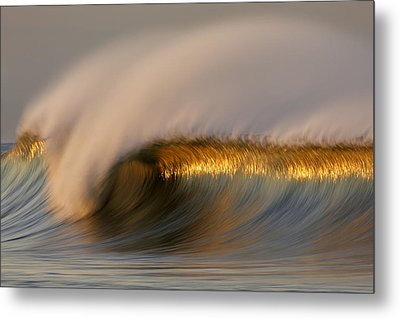 Metal Print featuring the photograph Golden Stripe Mg_9094 by David Orias