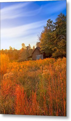 Golden Sunlight On A Fall Morning - North Georgia Metal Print by Mark E Tisdale