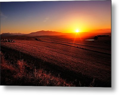 Golden Sunrise Over Farmland Metal Print