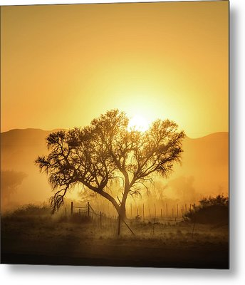 Golden Sunrise Metal Print by Piet Flour