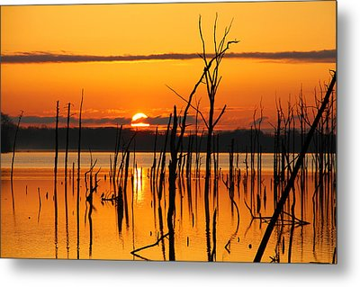 Golden Sunrise Metal Print