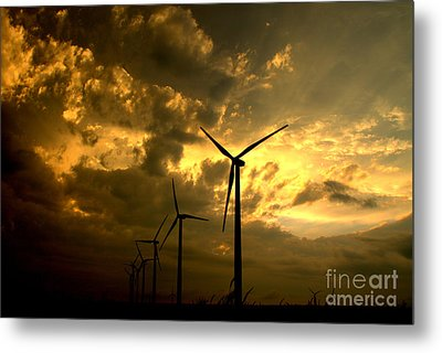 Metal Print featuring the photograph Golden Sunset 2 by Jim McCain
