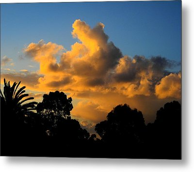Golden Sunset Metal Print by Mark Blauhoefer