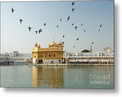 Golden Temple In Amritsar Metal Print by Yew Kwang
