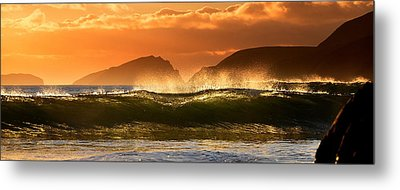Golden Wave Metal Print by Florian Walsh