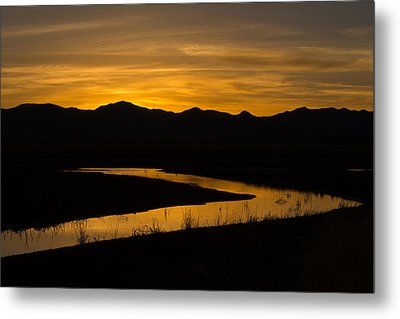 Golden Wetland Sunset Metal Print