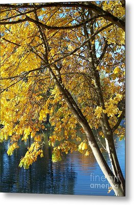 Metal Print featuring the photograph Golden Zen by Chalet Roome-Rigdon