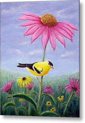 Metal Print featuring the painting Goldfinch And Coneflowers by Fran Brooks