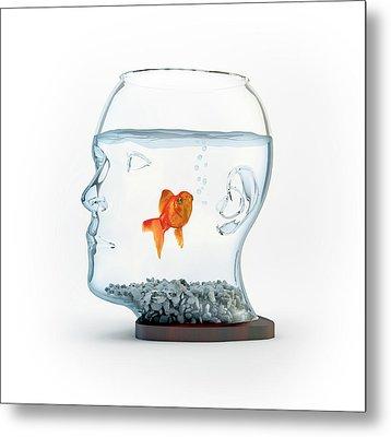 Goldfish In A Bowl Metal Print by Andrzej Wojcicki