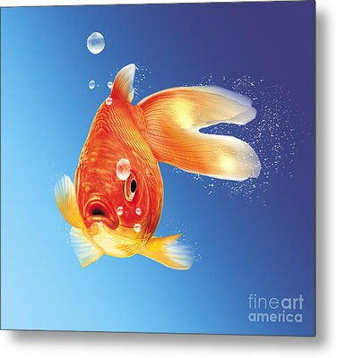 Goldfish With Water Bubbles Metal Print