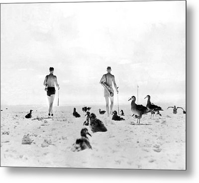 Golf With Gooney Birds Metal Print by Underwood Archives