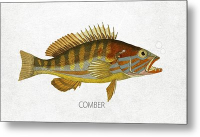 Comber Metal Print by Aged Pixel