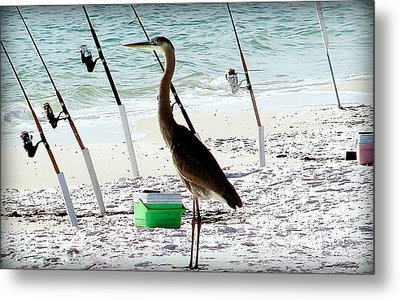 Gone Fishing Metal Print by Debra Forand