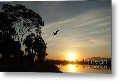 Gone Fishing  Metal Print by Kevin Ashley