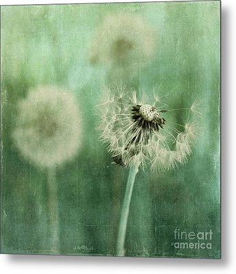 Gone Metal Print by Priska Wettstein
