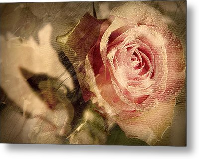 Gone With The Wind Romantic Rose Close-up Metal Print