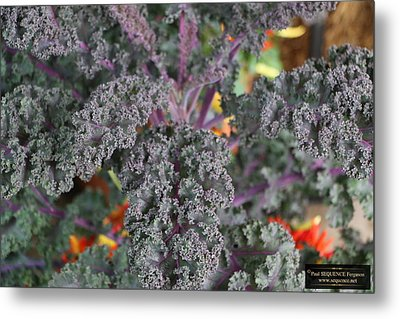 Good Food On The Wall Metal Print by Paul SEQUENCE Ferguson             sequence dot net