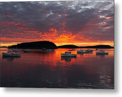 Good Morning Acadia Metal Print by Bernard Chen