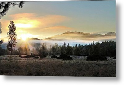 Metal Print featuring the photograph Good Morning by Julia Hassett