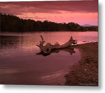 Good Morning Sacramento River Metal Print