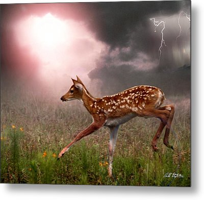 Goodbye Bambi Metal Print by Bill Stephens