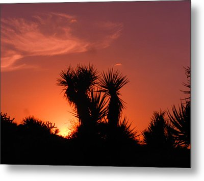 Goodevening Star Shine Metal Print