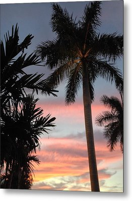 Goodnight Waterside  Metal Print