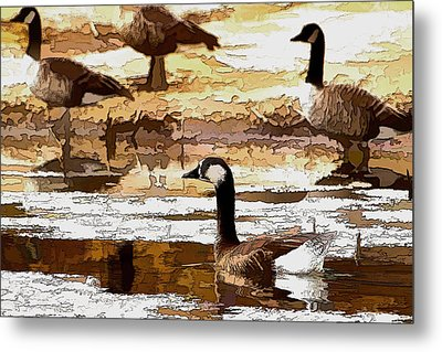 Goose Abstract Metal Print
