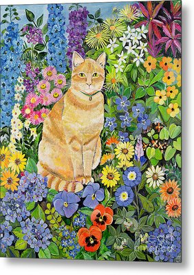 Gordon S Cat Metal Print
