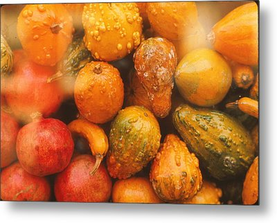 Metal Print featuring the photograph Gorgeous Gourds by Ira Shander