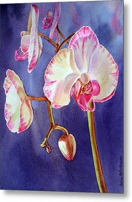 Gorgeous Orchid Metal Print by Irina Sztukowski