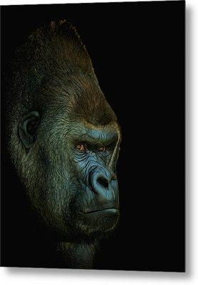 Gorilla Portrait Digital Art Metal Print by Ernie Echols