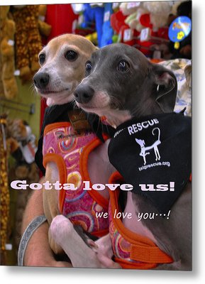 Gotta Love Us Metal Print by ARTography by Pamela Smale Williams