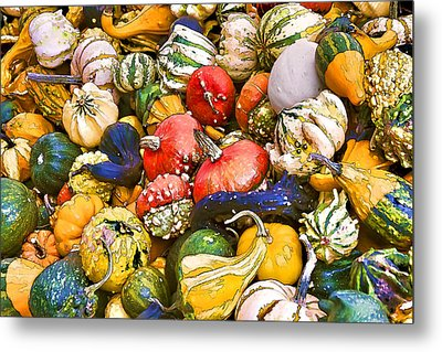 Gourds And Pumpkins At The Farmers Market Metal Print