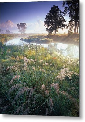 Grab Some Grass Metal Print by Ray Mathis