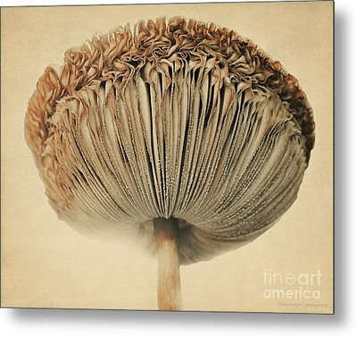 Grace Under Mushroom Metal Print