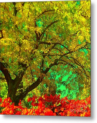 Metal Print featuring the photograph Graceful Locust by Ann Johndro-Collins