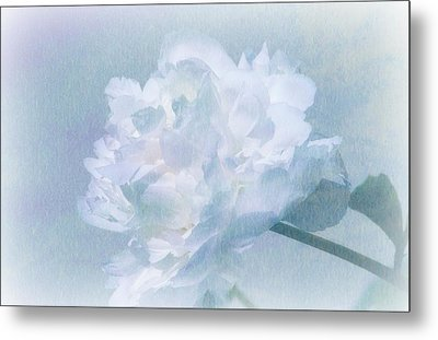 Gracefully Metal Print by Barbara S Nickerson