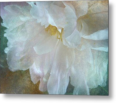Gracious Metal Print by Shirley Sirois