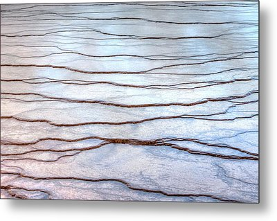 Metal Print featuring the photograph Gradations by David Andersen