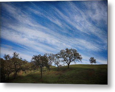 Gradually Metal Print by Laurie Search