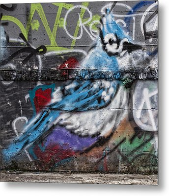 Graffiti Bluejay Metal Print by Carol Leigh