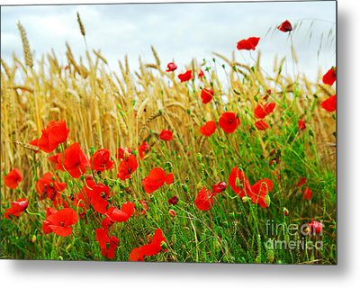 Grain And Poppy Field Metal Print