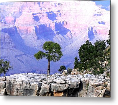 Grand Canyon 73 Metal Print by Will Borden