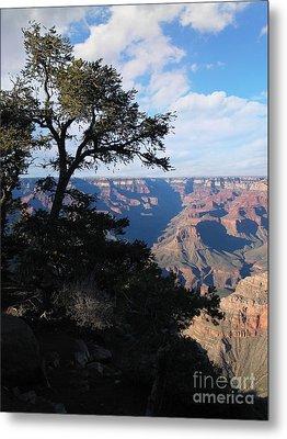 Grand Canyon Afternoon Metal Print by Stu Shepherd