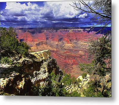 Metal Print featuring the photograph Grand Canyon by Craig T Burgwardt